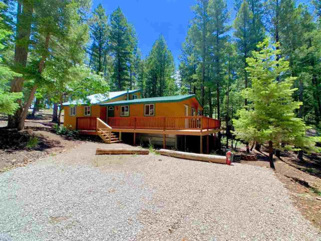 8 Skyline Dr, Cloudcroft, NM 88317 (MLS #160895) :: Assist-2-Sell Buyers and Sellers Preferred Realty