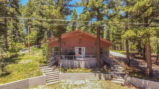 1202 Geronimo St, Cloudcroft, NM 88317 (MLS #160905) :: Assist-2-Sell Buyers and Sellers Preferred Realty