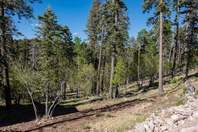 1411 Rainmaker Lp, Cloudcroft, NM 88317 (MLS #160912) :: Assist-2-Sell Buyers and Sellers Preferred Realty