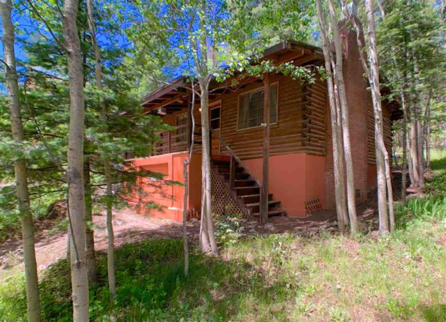 801 Squirrel Ave #3, Cloudcroft, NM 88317 (MLS #160915) :: Assist-2-Sell Buyers and Sellers Preferred Realty