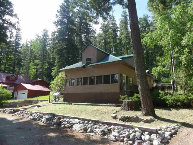 501 Grand Blvd, Cloudcroft, NM 88317 (MLS #160920) :: Assist-2-Sell Buyers and Sellers Preferred Realty