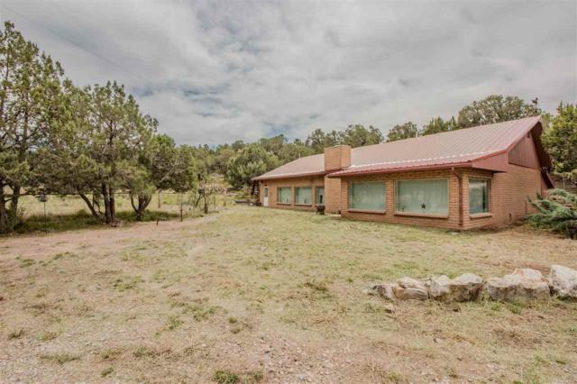14 Bootlegger Rd, High Rolls Mountain Park, NM 88325 (MLS #160933) :: Assist-2-Sell Buyers and Sellers Preferred Realty