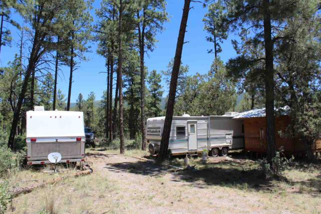 68 Pawnee Dr #10, Timberon, NM 88350 (MLS #160973) :: Assist-2-Sell Buyers and Sellers Preferred Realty
