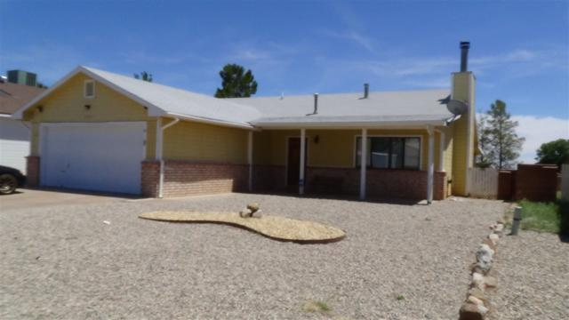 1445 Discovery Av, Alamogordo, NM 88310 (MLS #160974) :: Assist-2-Sell Buyers and Sellers Preferred Realty