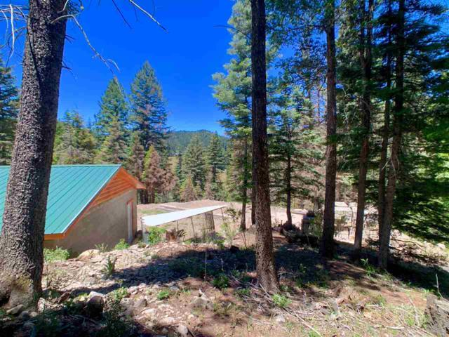 32 Mamaw St, Cloudcroft, NM 88317 (MLS #160976) :: Assist-2-Sell Buyers and Sellers Preferred Realty