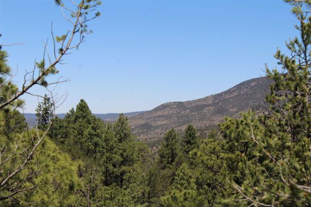 Lot 34 Java Ave #9, Timberon, NM 88350 (MLS #160994) :: Assist-2-Sell Buyers and Sellers Preferred Realty