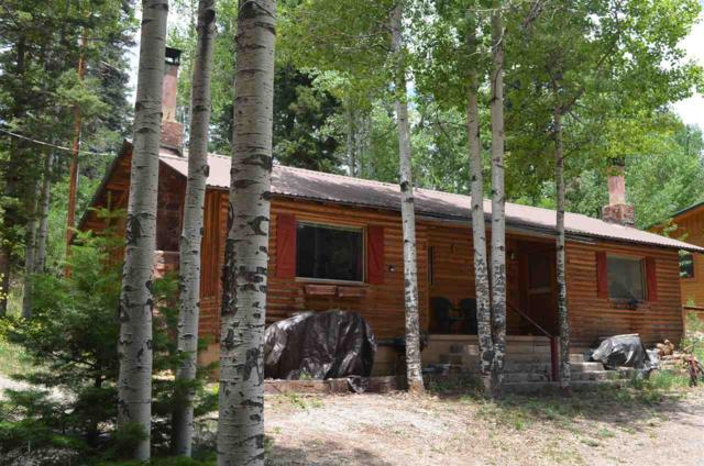 910 Panther Ave, Cloudcroft, NM 88317 (MLS #160995) :: Assist-2-Sell Buyers and Sellers Preferred Realty