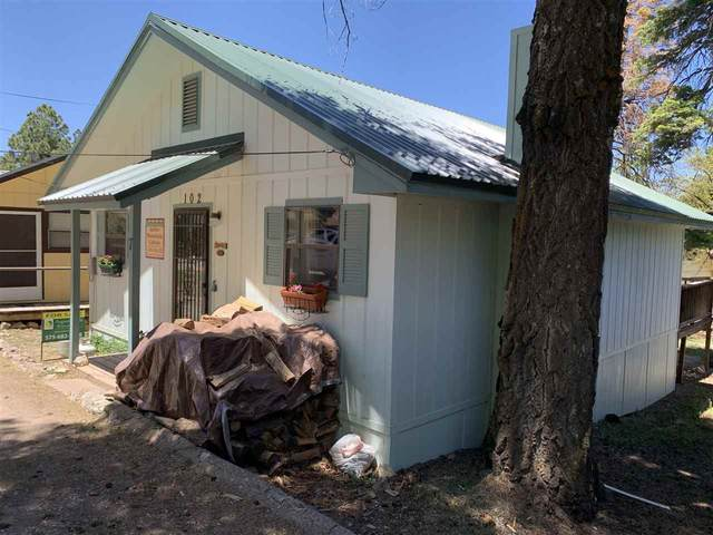 102 Squirrel Ave, Cloudcroft, NM 88317 (MLS #160996) :: Assist-2-Sell Buyers and Sellers Preferred Realty