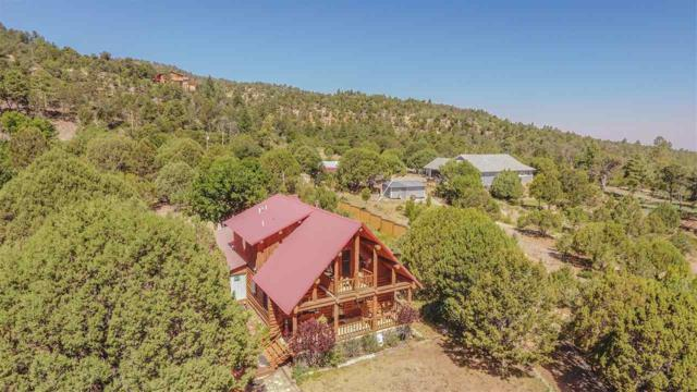 23 Wild Turkey Cir, High Rolls Mountain Park, NM 88325 (MLS #161003) :: Assist-2-Sell Buyers and Sellers Preferred Realty