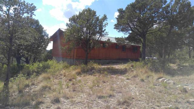 494 Perch Dr #12, Timberon, NM 88350 (MLS #161018) :: Assist-2-Sell Buyers and Sellers Preferred Realty