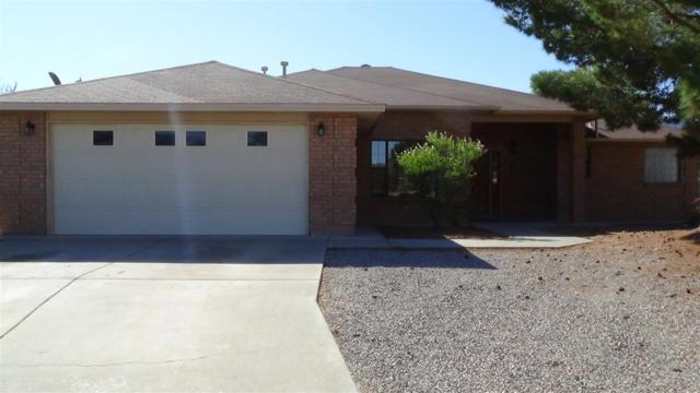 2619 Oaktree Ct, Alamogordo, NM 88310 (MLS #161021) :: Assist-2-Sell Buyers and Sellers Preferred Realty
