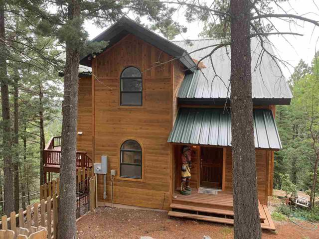 51 Jenny St, Cloudcroft, NM 88317 (MLS #161038) :: Assist-2-Sell Buyers and Sellers Preferred Realty