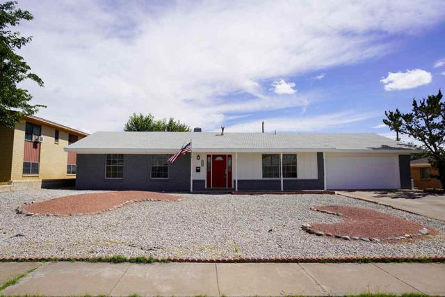 2310 Rancho Ln, Alamogordo, NM 88310 (MLS #161052) :: Assist-2-Sell Buyers and Sellers Preferred Realty