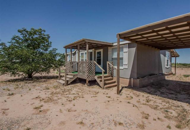 35 Hobo Ln, Alamogordo, NM 88310 (MLS #161065) :: Assist-2-Sell Buyers and Sellers Preferred Realty
