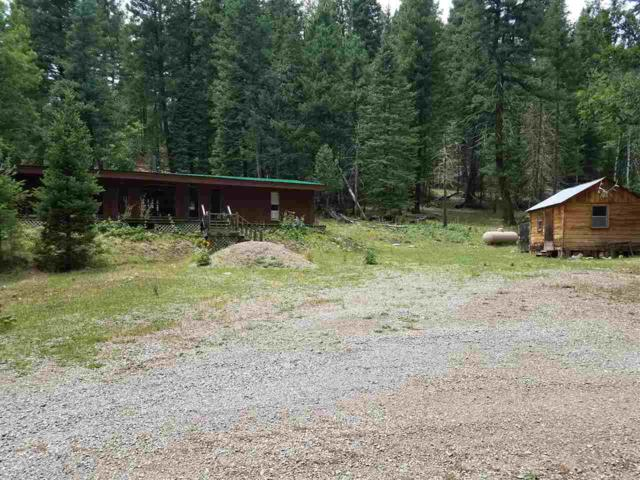 479 Hay Canyon Rd, Sacramento, NM 88347 (MLS #161081) :: Assist-2-Sell Buyers and Sellers Preferred Realty