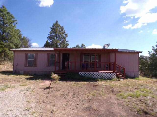 150 Bell Dr, Mayhill, NM 88339 (MLS #161089) :: Assist-2-Sell Buyers and Sellers Preferred Realty