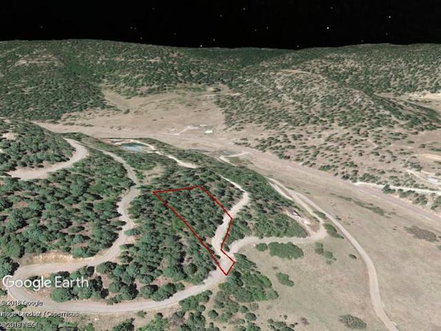 10 Elk Ridge, Cloudcroft, NM 88317 (MLS #161098) :: Assist-2-Sell Buyers and Sellers Preferred Realty
