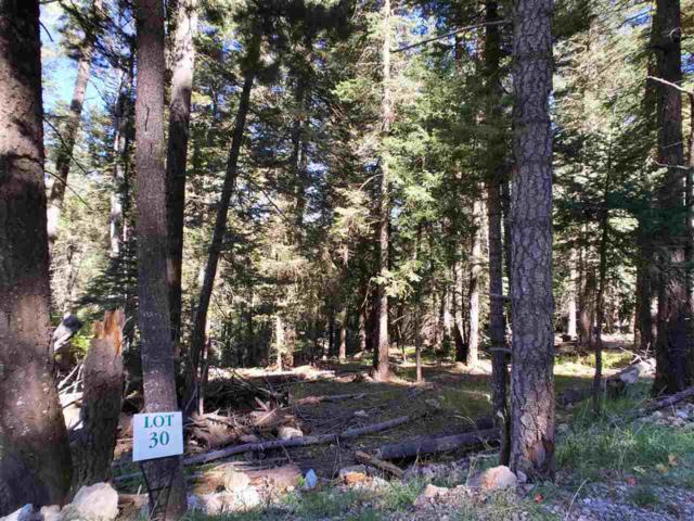 21 Elk Ridge, Cloudcroft, NM 88317 (MLS #161104) :: Assist-2-Sell Buyers and Sellers Preferred Realty