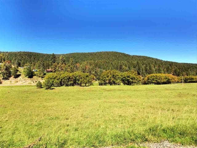 39 Elk Springs, Cloudcroft, NM 88317 (MLS #161105) :: Assist-2-Sell Buyers and Sellers Preferred Realty