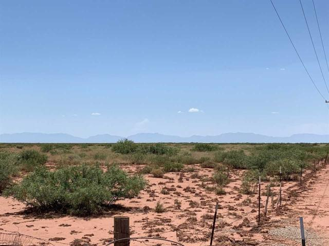 Address Not Published, Tularosa, NM 88352 (MLS #161118) :: Assist-2-Sell Buyers and Sellers Preferred Realty