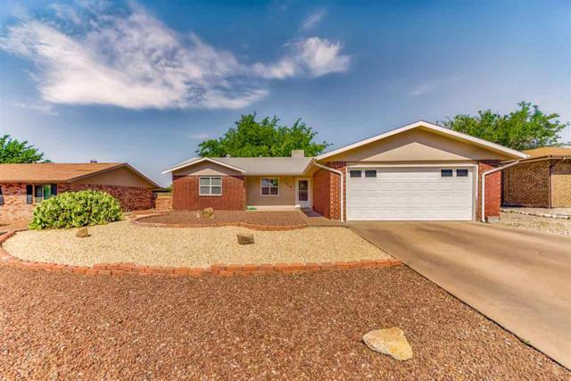 1219 Comanche Trl, Alamogordo, NM 88310 (MLS #161122) :: Assist-2-Sell Buyers and Sellers Preferred Realty