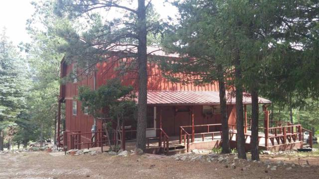 2 Telephone Rd #7, Cloudcroft, NM 88317 (MLS #161124) :: Assist-2-Sell Buyers and Sellers Preferred Realty