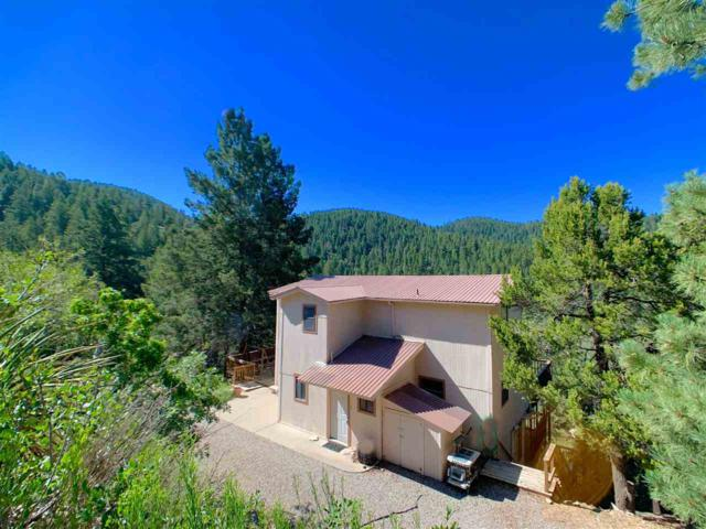 15 Skyline Trl #7, Cloudcroft, NM 88317 (MLS #161151) :: Assist-2-Sell Buyers and Sellers Preferred Realty