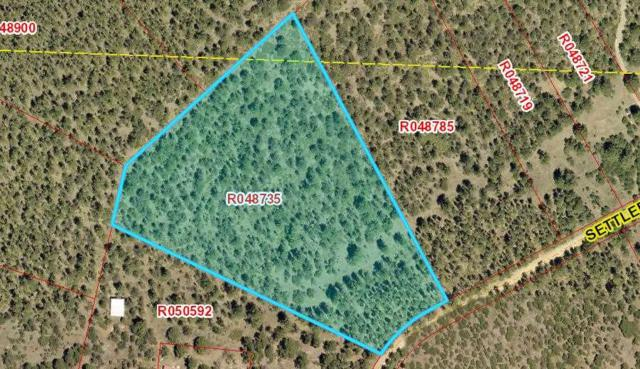 Lot 12 Settlers Ln, Timberon, NM 88350 (MLS #161157) :: Assist-2-Sell Buyers and Sellers Preferred Realty