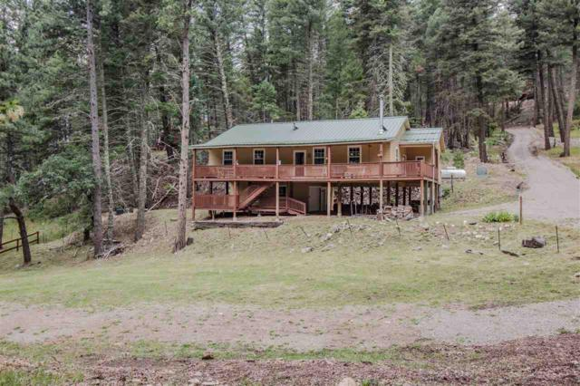 59 Waterfall Dr, Cloudcroft, NM 88317 (MLS #161162) :: Assist-2-Sell Buyers and Sellers Preferred Realty