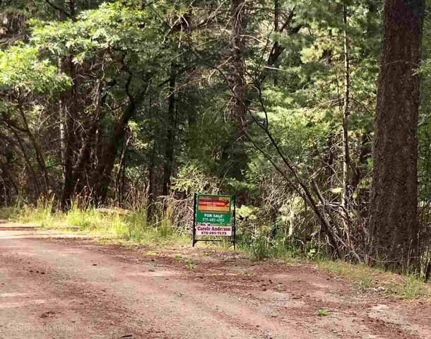 BLOCK 33 Pine Glen, Cloudcroft, NM 88317 (MLS #161182) :: Assist-2-Sell Buyers and Sellers Preferred Realty