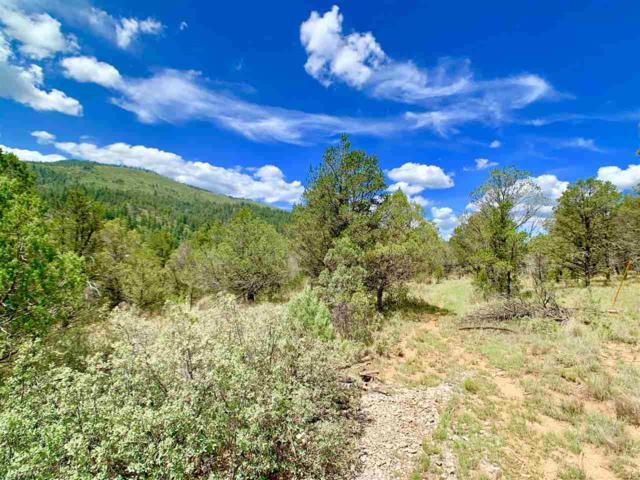 35 Orions Belt, Mayhill, NM 88339 (MLS #161187) :: Assist-2-Sell Buyers and Sellers Preferred Realty
