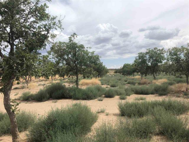 Grand Blvd, OSCURA, NM 88301 (MLS #161203) :: Assist-2-Sell Buyers and Sellers Preferred Realty