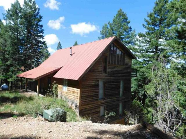 18 Forest View Rd, Cloudcroft, NM 88317 (MLS #161212) :: Assist-2-Sell Buyers and Sellers Preferred Realty