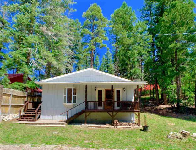 404 Panther Ave #3, Cloudcroft, NM 88317 (MLS #161219) :: Assist-2-Sell Buyers and Sellers Preferred Realty
