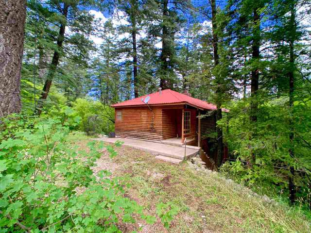 902 Coyote Ave #3, Cloudcroft, NM 88317 (MLS #161242) :: Assist-2-Sell Buyers and Sellers Preferred Realty