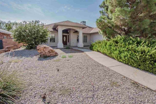 3673 Ironwood Dr, Alamogordo, NM 88310 (MLS #161246) :: Assist-2-Sell Buyers and Sellers Preferred Realty