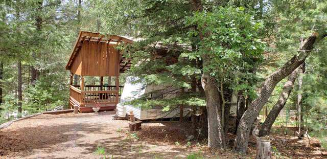 106 Wildwood Dr, Cloudcroft, NM 88317 (MLS #161257) :: Assist-2-Sell Buyers and Sellers Preferred Realty