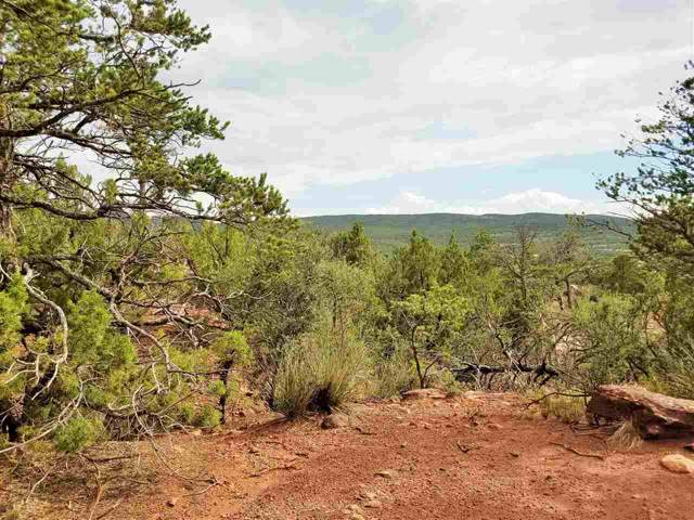 Montano Colorado Rd, High Rolls Mountain Park, NM 88325 (MLS #161274) :: Assist-2-Sell Buyers and Sellers Preferred Realty