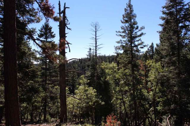 Lot 12 Big Dipper Rd, Cloudcroft, NM 88317 (MLS #161341) :: Assist-2-Sell Buyers and Sellers Preferred Realty