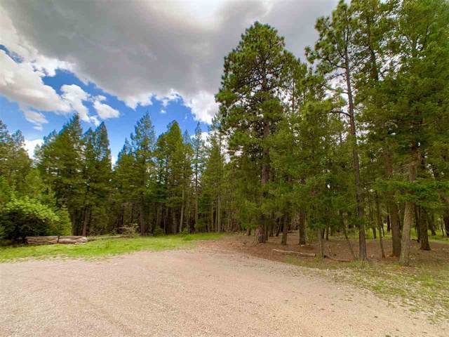 24 Rawlings Ridge Rd, Cloudcroft, NM 88317 (MLS #161364) :: Assist-2-Sell Buyers and Sellers Preferred Realty