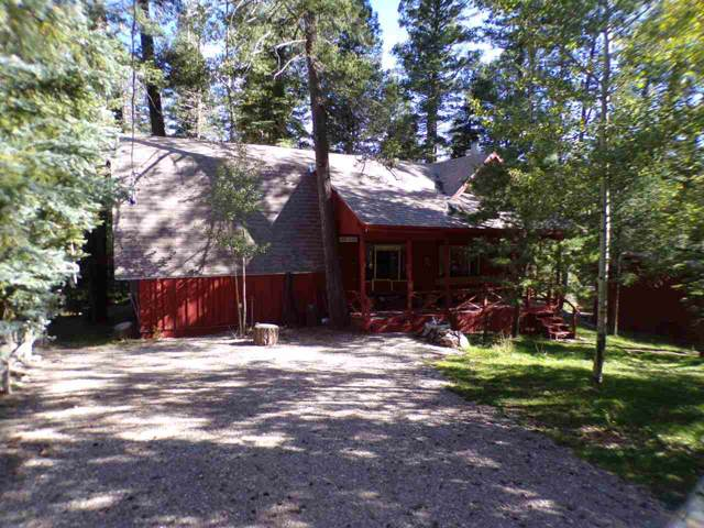 415 Balsam Ln, Cloudcroft, NM 88317 (MLS #161482) :: Assist-2-Sell Buyers and Sellers Preferred Realty