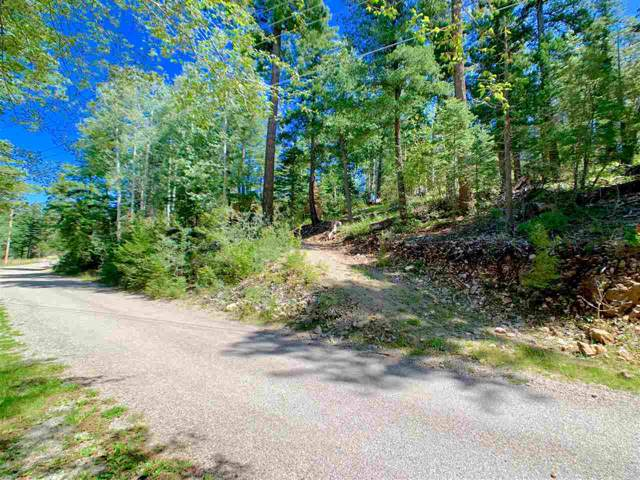 1108 Blanca Vista, Cloudcroft, NM 88317 (MLS #161488) :: Assist-2-Sell Buyers and Sellers Preferred Realty