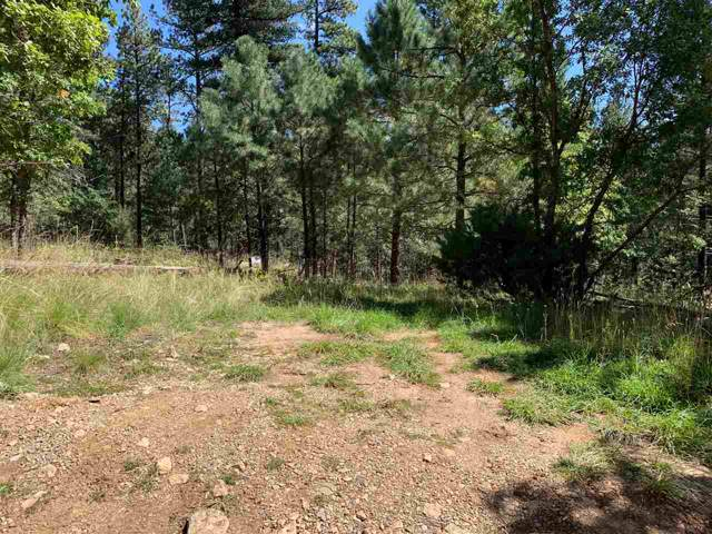 Bear Trl #3, Cloudcroft, NM 88317 (MLS #161494) :: Assist-2-Sell Buyers and Sellers Preferred Realty