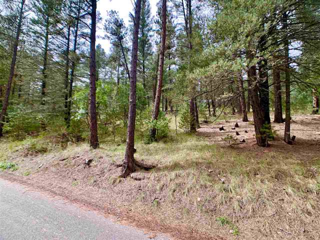 72 Cloud Country Dr #1, Mayhill, NM 88339 (MLS #161523) :: Assist-2-Sell Buyers and Sellers Preferred Realty