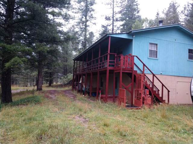 28 Sherwood Forest, Mayhill, NM 88339 (MLS #161532) :: Assist-2-Sell Buyers and Sellers Preferred Realty