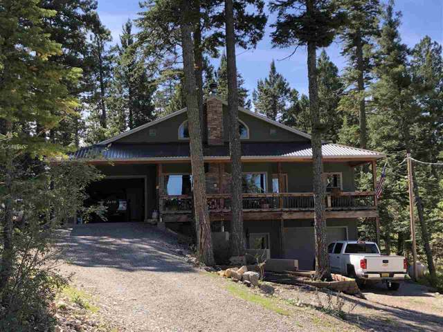 1210 Jim Tom Way 1-A, Cloudcroft, NM 88317 (MLS #161552) :: Assist-2-Sell Buyers and Sellers Preferred Realty