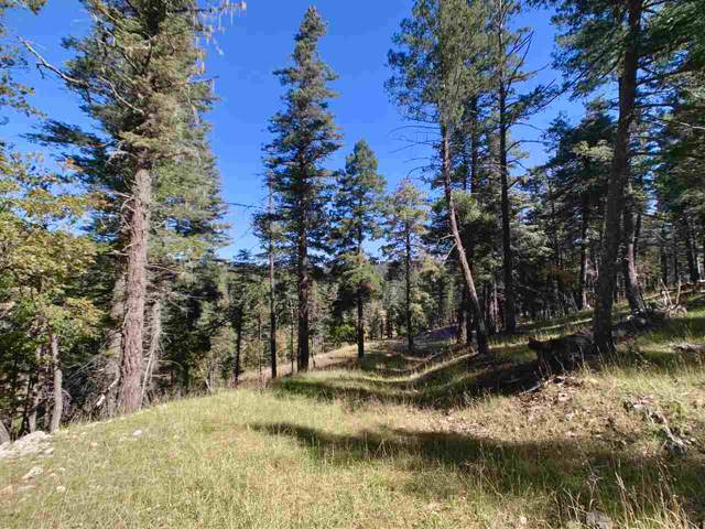 30 Water Tank Rd, Cloudcroft, NM 88317 (MLS #161575) :: Assist-2-Sell Buyers and Sellers Preferred Realty