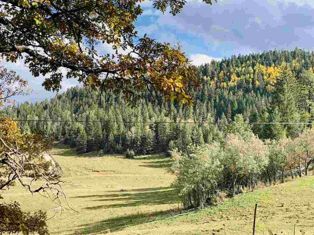 Cox Canyon Hwy, Cloudcroft, NM 88317 (MLS #161584) :: Assist-2-Sell Buyers and Sellers Preferred Realty