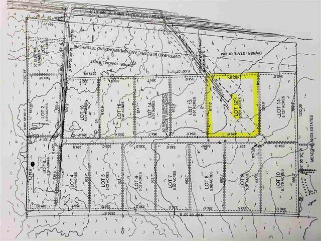 Lot 12 Address Not Published, Alamogordo, NM 88310 (MLS #161618) :: Assist-2-Sell Buyers and Sellers Preferred Realty
