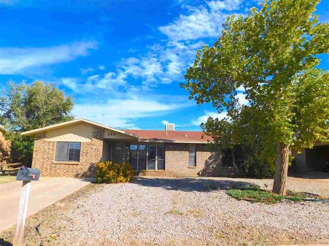 507 Plainview Dr, Alamogordo, NM 88310 (MLS #161651) :: Assist-2-Sell Buyers and Sellers Preferred Realty